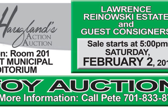 February 2, 2019 &#8211&#x3B; Toy Auction